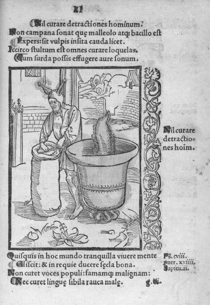 http://www.laurie-dallava.com/files/gimgs/11_brand-sebastien-ouvrage---stultifera-navis-edition---bale---j-bergman-de-olpe-1497.jpg