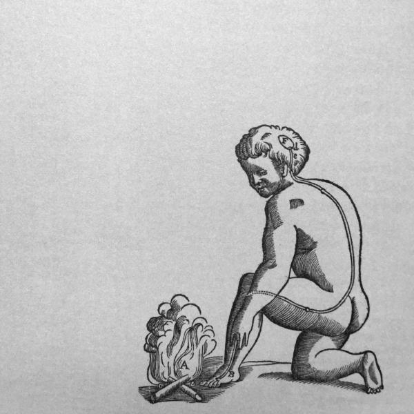 http://www.laurie-dallava.com/files/gimgs/11_lepreuve-du-feu-nb-de-hominis-figuris-rene-descartes-1662.jpg