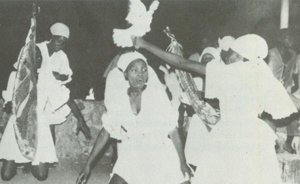 http://www.laurie-dallava.com/files/gimgs/11_una-imagen-de-los-rituales-de-la-paloma.jpg